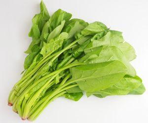 緑の野菜 ほうれん草